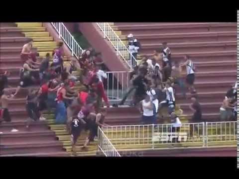 stadium brawl